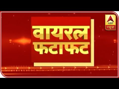 Know All Viral News And Stories of the day | ABP News
