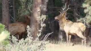 Community Profile Video (Genesee, CO) | Keith Enockson Video Production, Denver, CO