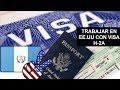 Visa E1 Proceso de Solicitud, USA 2020