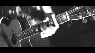 Damien McFly - Wake me up (Avicii acoustic folk cover)