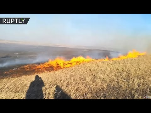 Massive wildfires in Russian Far East: 34 injured, 100+ houses destroyed