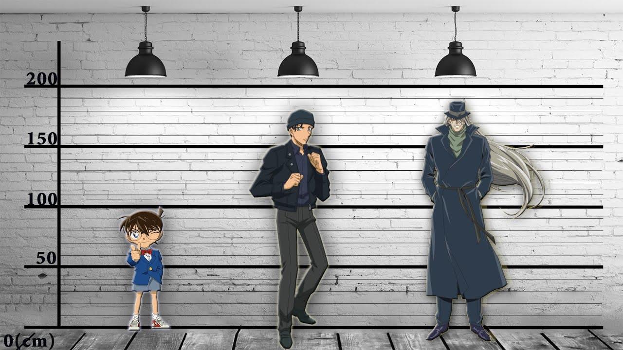 Chiều cao các nhân vật trong Conan | Detective Conan Character Size Comparison