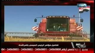 دينا عبدالكريم: إيه الجريمة إن واحد من المؤيدين ينتقد!