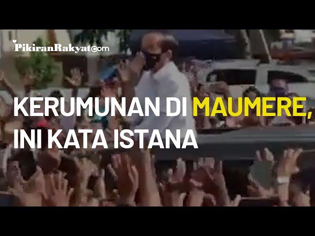 Soal Kerumunan Jokowi di Maumere, NTT, Istana: Tetap Diingatkan untuk Taat Protokol Kesehatan