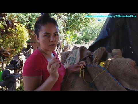 Conozcamos Las Habilidades De Josselin - Los Pitos o Flautines 4 de 16