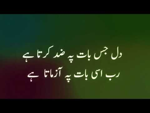 Quotes About Allah And His Mercy In Urdu