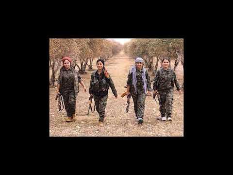 وليد الشيخ - قصيدة - أحب الأكراد- - 23:20-2019 / 4 / 15