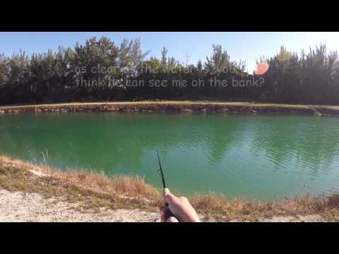 Skunked - Miami Canal Fishing 150214