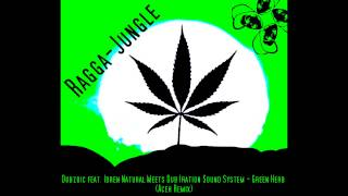 Dubzoic feat. Idren Natural Meets Dub Iration Sound System - Green ...