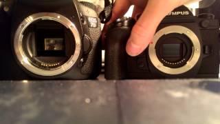 Canon 7D & Olympus OM-D EM-1 #Burst shutter sound comparision