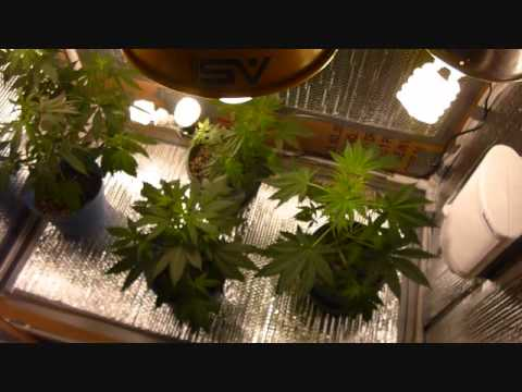 best way to make a grow box 1