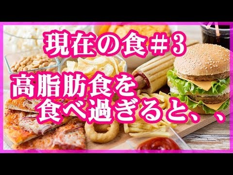 【食生活 現在】高脂肪食を食べ過ぎると、、、