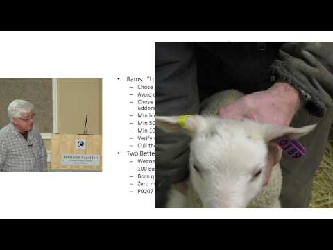 Patrick Smith Presentation  2013
