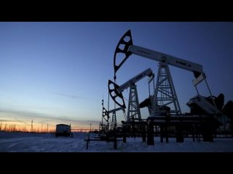 Hofmeister predicts rise in oil prices