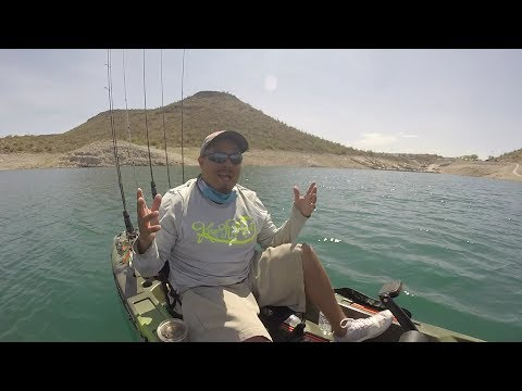 Striper Fishing Gone Wrong At Lake Pleasant AZ