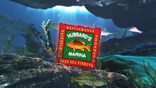 39 Hour Overnight Fishing Trip Hubbard s Marina Madeira Beach FL www HubbardsMarina com