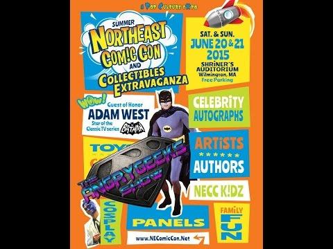 Northeast Comic Con 2015 Special