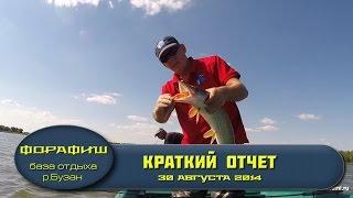 Рыбалка в Астрахани. Ловля щуки на спиннинг видео..