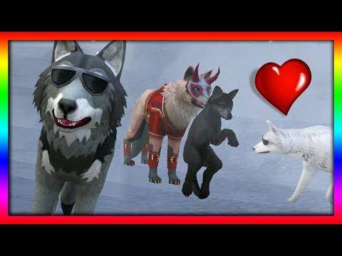 Видео Игра симулятор волка бесплатно онлайн