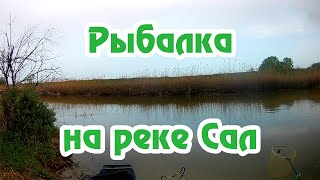 Рыбалка с ФИШМИР Фидер река Сал