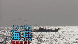海燕(うみつばめ) カラオケ 松原のぶえ
