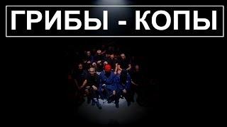 ГРИБЫ - КОПЫ (Клип HD 1080)