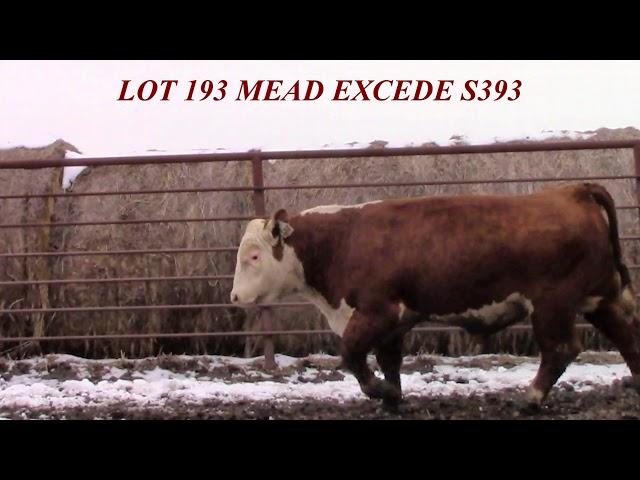 Mead Farms Lot 193