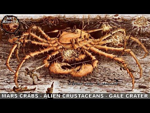 CRABS on MARS - ALIEN CRUSTACEANS in GALE CRATER. ArtAlienTV - 1080p