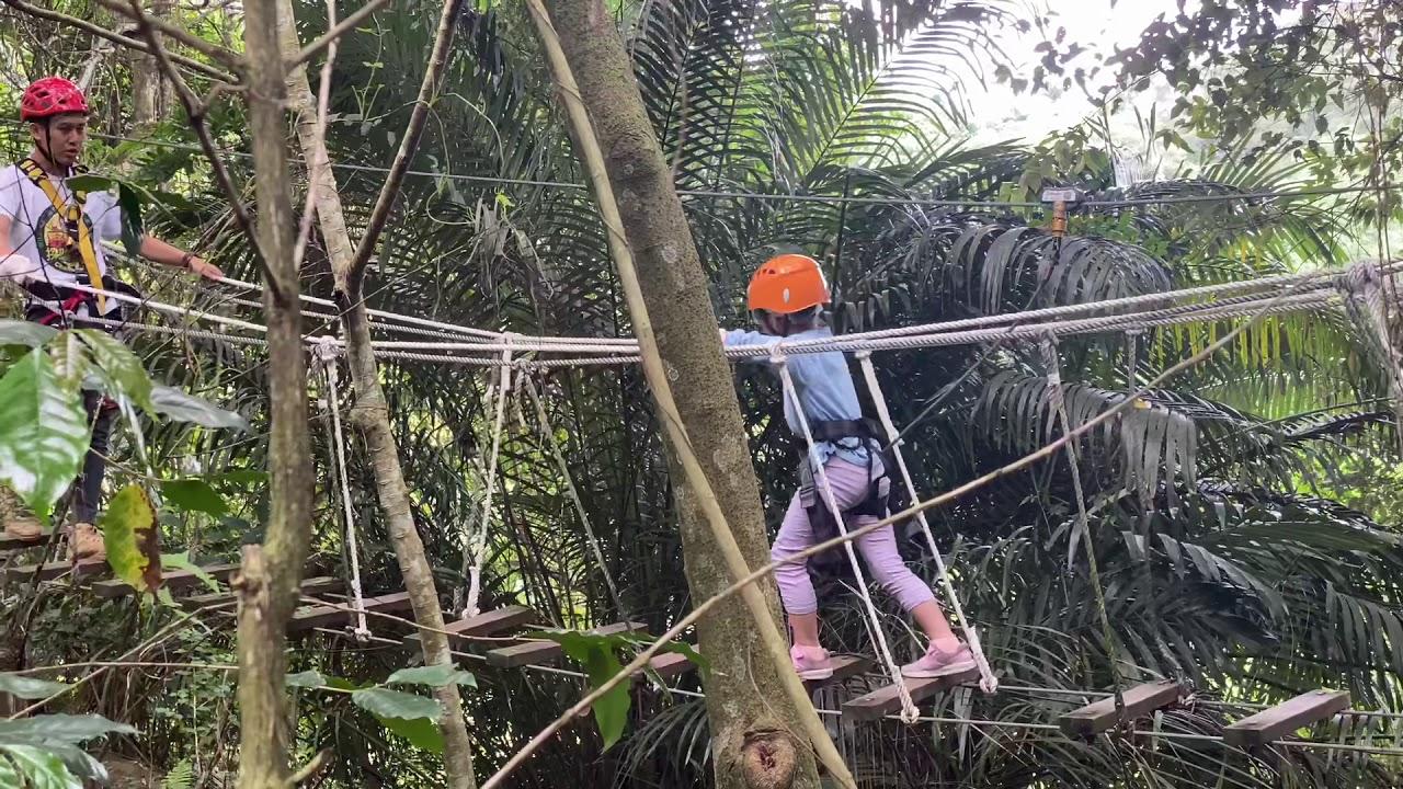 野猴子探險森林-2 - YouTube