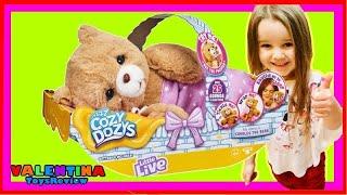 Surprise Unboxing Little Live Cozy Dozy Cubbles and Pretend Play Valentina ToysReview