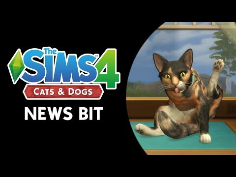 The Sims 4 News Bit: MEOW MEOW WOOF! NEW PETS INFO!