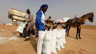 Die erste Frau im Senegal mit Salz