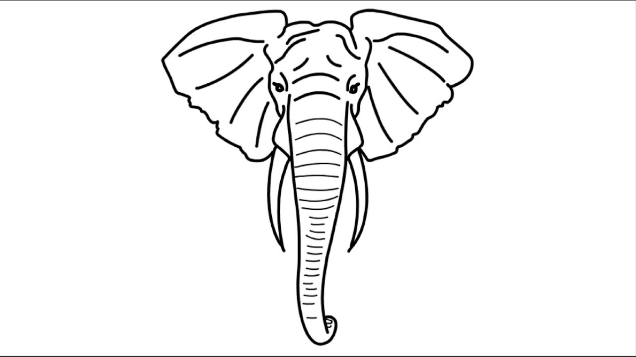 Big Elephant Head Face Draw | Drawing of Elephant | How To Draw ...