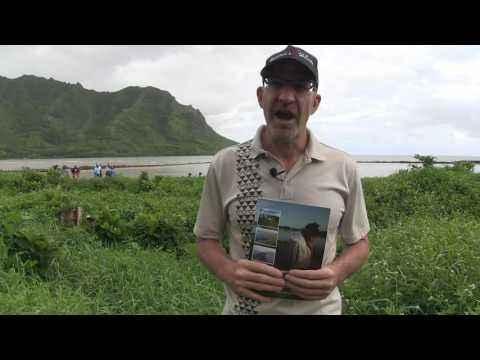 DLNR & YOU Guiding Restoration Of Hawaiian Fishponds HD