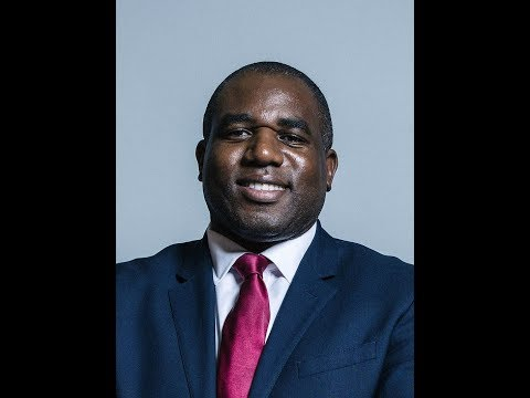 Labour MP David Lammy Tears Into Theresa May After Brexit Statement