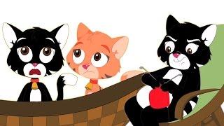 trois petits chatons rimes | des chansons pour enfants de collecte | chansons enfantines populaires