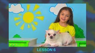 Английский для детей. УРОК 6. Повторяем слова из уроков 1-5 и учим новые.