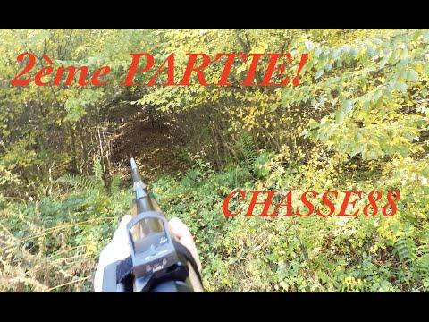 Chasse Au Sanglier En Battue Dans Les Vosges 2ème Partie Saison 2015/2016 Blaser R8