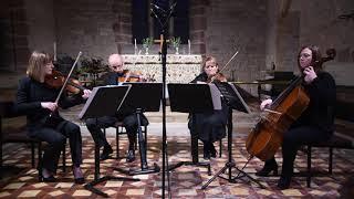 Moondance-Van Morrison-Capriccio Quartet arranged by Bojana Jovanovic
