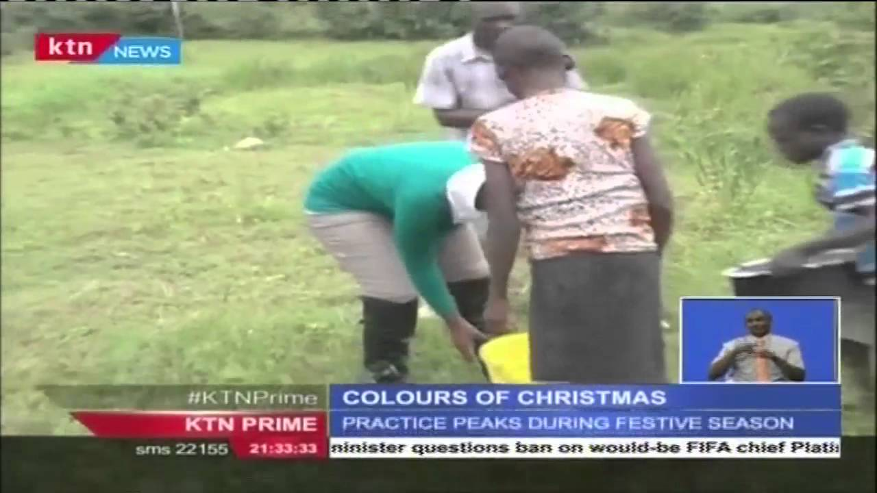 Mud huts in kakamega get a facelift during christmas times