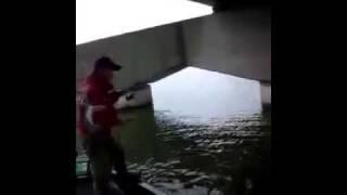 北利根川でビッグキャット!
