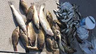 Зимняя рыбалка на озере Балхаш..