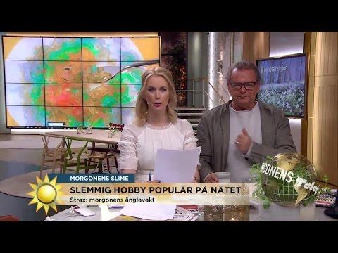 Gör din egen slajm! - Nyhetsmorgon (TV4)