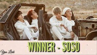 WINNER (위너) - SOSO (Lyrics Color)