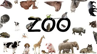 ZOO (Poem about animals. Children's poem about pets.)
