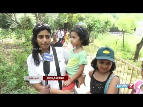 Colorful Butterfly Park at Vandalur zoo | Tamil Nadu | News7 Tamil