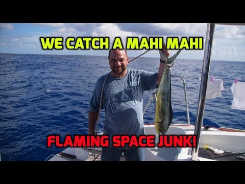 Transatlantic Passage #12.  Catch a Mahi Mahi.  A satellite burns up in the night sky for us to see.
