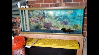 Sneak Peek @ Bigger & Better 55 Gallon DIY Aquaponics System