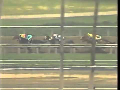 TIF Reports: Changing the Rules :: Thoroughbred Idea Foundation