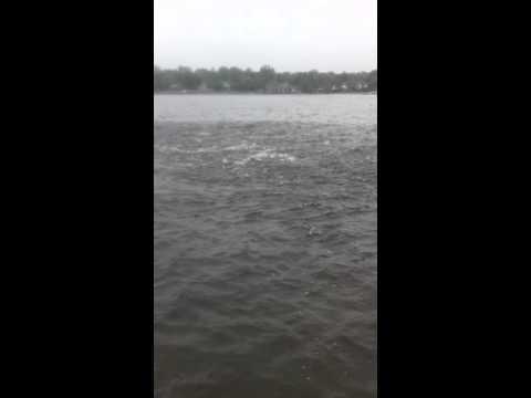 Pride Fishing Tackle Navesink Bunker Massacare